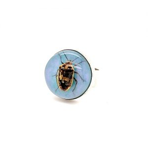 Sterling Silver Wide Band Style Ring w/ Beetle in Resin